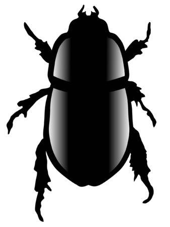 scarabeo: Una illustrazione colorata con un insetto. Scarab Beetle