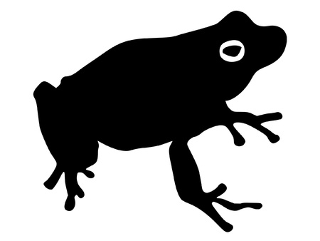 tropical frog: a black illustration of silhouette of tree frog Illustration