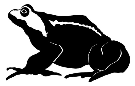 croaking: an illustration of black silhouette of toad