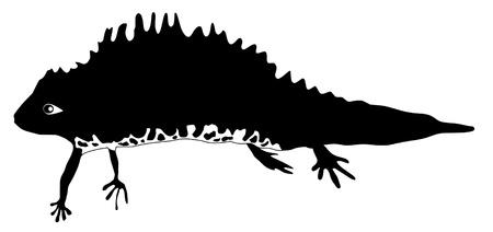 newt: an illustration of black silhouette of newt