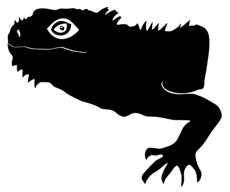 coldblooded: an illustration of black silhouette of iguana