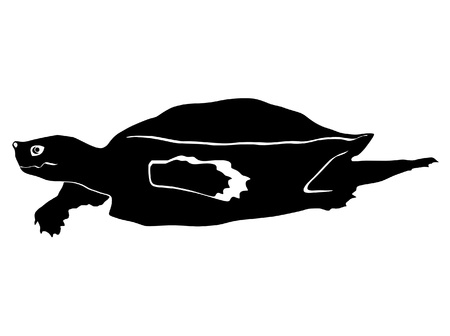 an illustration of black silhouette of loggerhead turtle Vector