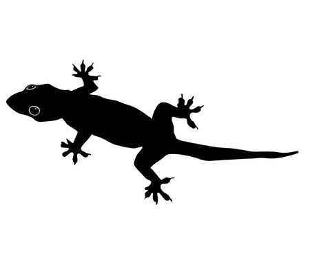 gecko: an illustration of black silhouette of gecko