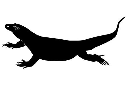 komodo: un esempio di sagoma nera di drago di Komodo