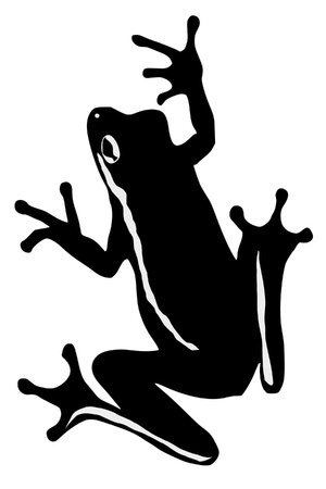an illustration of black silhouette of tree frog Stock Vector - 11611555