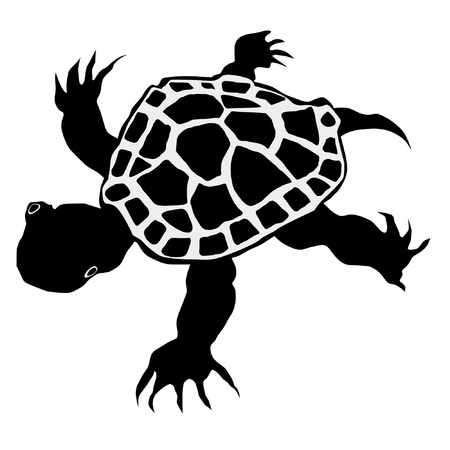 an illustration of black silhouette of little turtle Vector