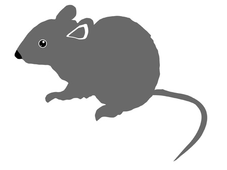 animal hair: a black silhouette of serie of animals, gray mouse