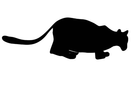 a black silhouette of serie of animals, lioness Stock Vector - 11611525
