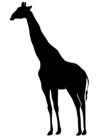 a black silhouette of serie of animals, giraffe Vector