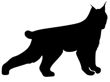 lince: una silueta de color negro de la serie de los animales, el lince