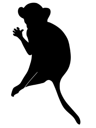 a black silhouette of serie of animals, monkey Stock Vector - 11611694