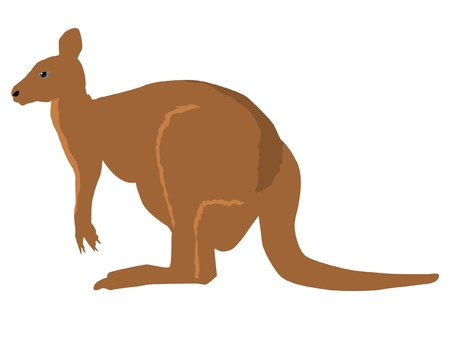 serie: a color illustration of serie of animals, kangaroo