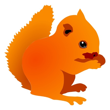 a color illustration of serie of animals, squirrel Vector