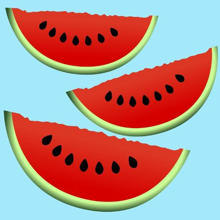 Background of sliced watermelon Vector