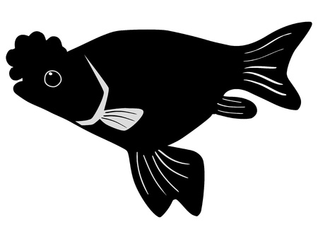 silhouette of the porkfish on white background Stock Vector - 15786546