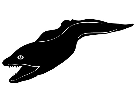 moray: silhouette of the moray eel on white background