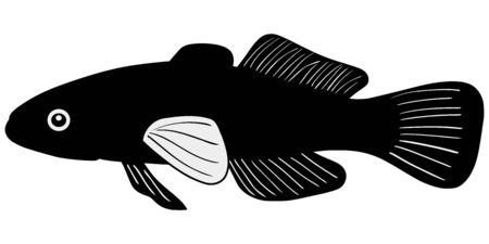 gudgeon: silhouette of the gudgeon on white background
