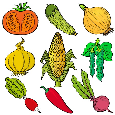 Set of hand drawn, vector, cartoon illustration of vegetables Vector