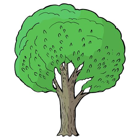 greenwood: Hand drawn, vector, cartoon illustration of poplar