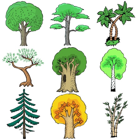 greenwood: Set of cartoon,  illustration of trees