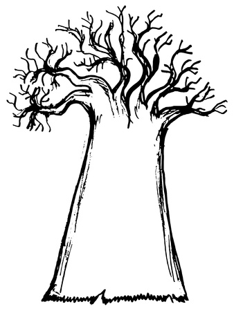 baobab: hand drawn, cartoon, sketch illustration of baobab