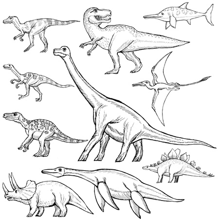 jurassic: hand drawn, sketch illustration of different dinosaurs Illustration