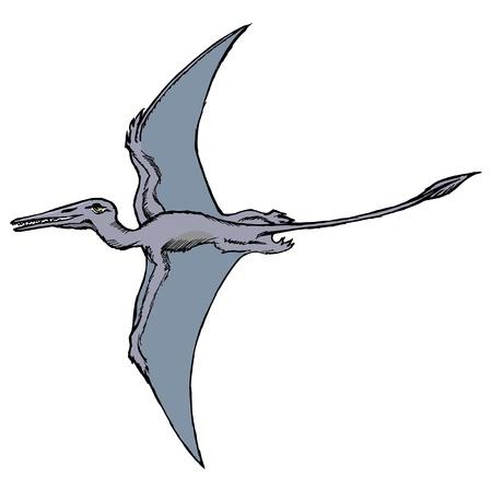 dinosaurio caricatura: dibujado a mano, vector, ilustración dibujo de pterodáctilo