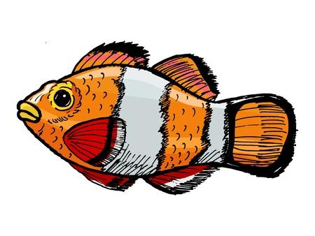 nemo: hand drawn, sketch, cartoon illustration of clown fish