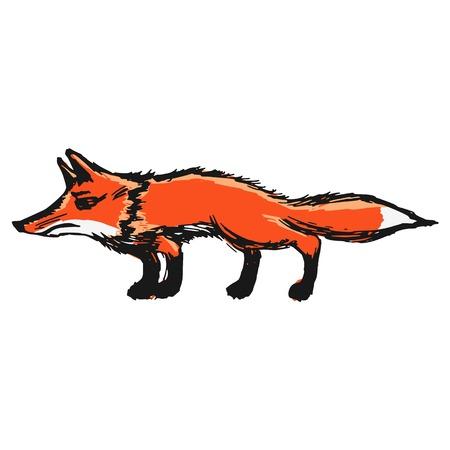 hand drawn, sketch, cartoon illustration of red fox Фото со стока - 24665874