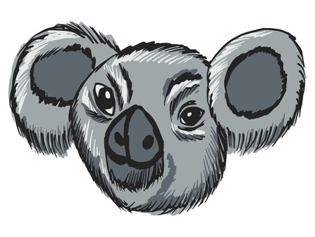 hand drawn, sketch, cartoon illustration of koala Vector