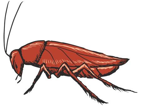 hand drawn, sketch, cartoon illustration of cockroach Иллюстрация