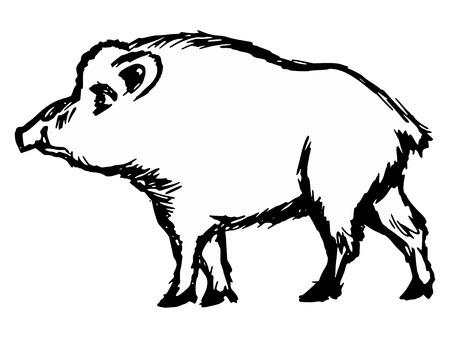 hand drawn cartoon: dibujados a mano, dibujos animados, ilustraci�n boceto de jabal�