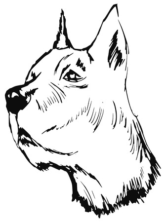 sniffing: hand drawn, sketch, cartoon illustration of great dane Illustration