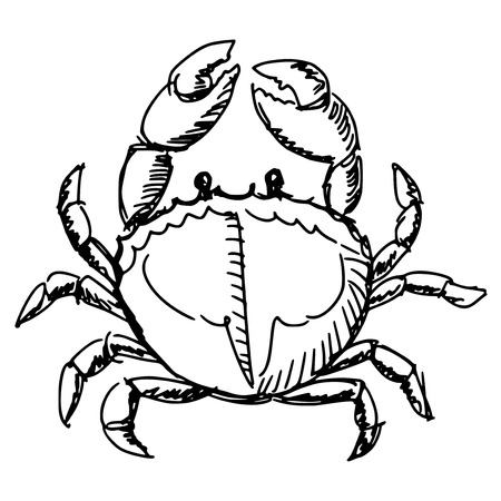whole creature: cartoon hand drawn illustration of crab