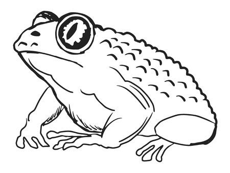 wart: cartoon hand drawn illustration of toad