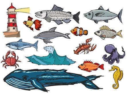 set of illustrations of marine life Vector