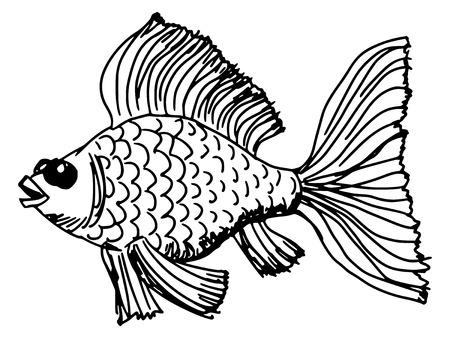 goldfish jump: sketch, doodle, hand drawn illustration of goldfish