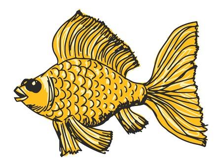 sketch, doodle, hand drawn illustration of goldfish Vector