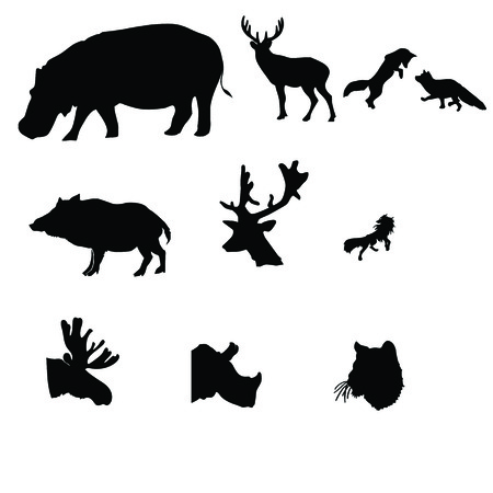sly: animal silhouette isolated in white   Illustration