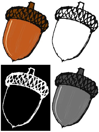 acorn: Editable vector illustrations in variations. Acorn