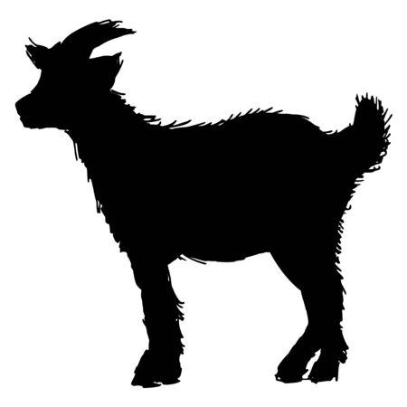 baby goat: black silhouette of goat