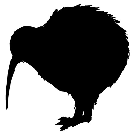 black silhouette of kiwi bird Illustration