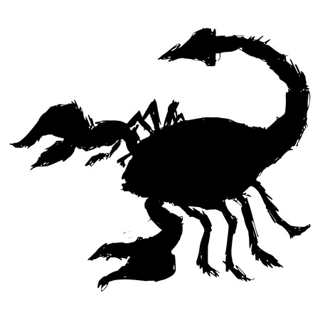 poisonous organism: black silhouette of scorpion
