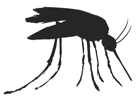 black silhouette of mosquitoe