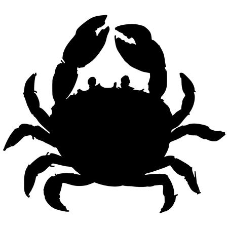 whole creature: black silhouette of crab