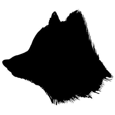 polar climate: black silhouette of polar fox