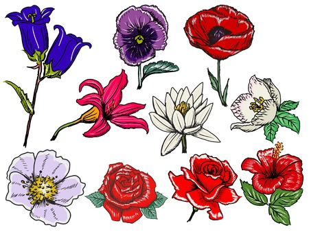 set of hand draw, sketch illustrations of flowers Ilustracja