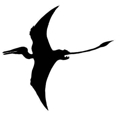 pterodactyl: black silhouette of pterodactyl