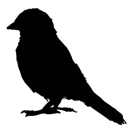 looking away: black silhouette of sparrow Illustration