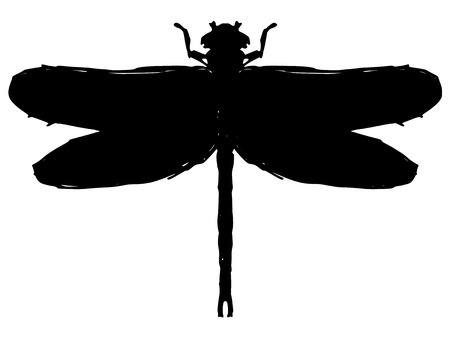 black silhouette of dragonfly